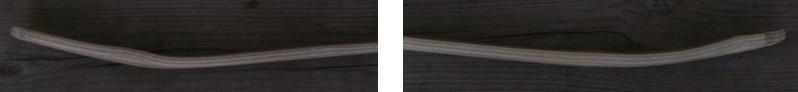 amerindien_fren_compare_courbures.jpg.14c1b98277fb8fc039f82b7439b11a5c.jpg